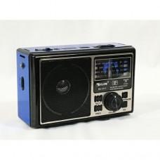Портативный радио приемник GOLON RX 1417 USB FM Синий